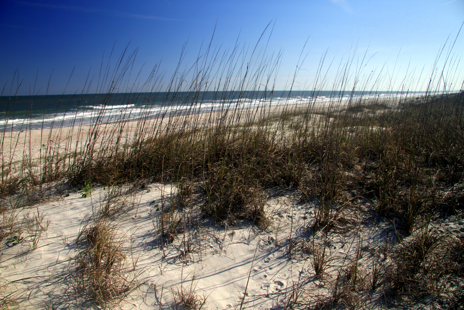 A Few More Things That Make Amelia Island An Attractive Place To Live & Visit