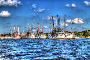 Shrimp boats docked at downtown Fernandina Beach's harbor provide some of the tastiest and safest shrimp available anywhere. (Photo courtesy of Rick Scott)