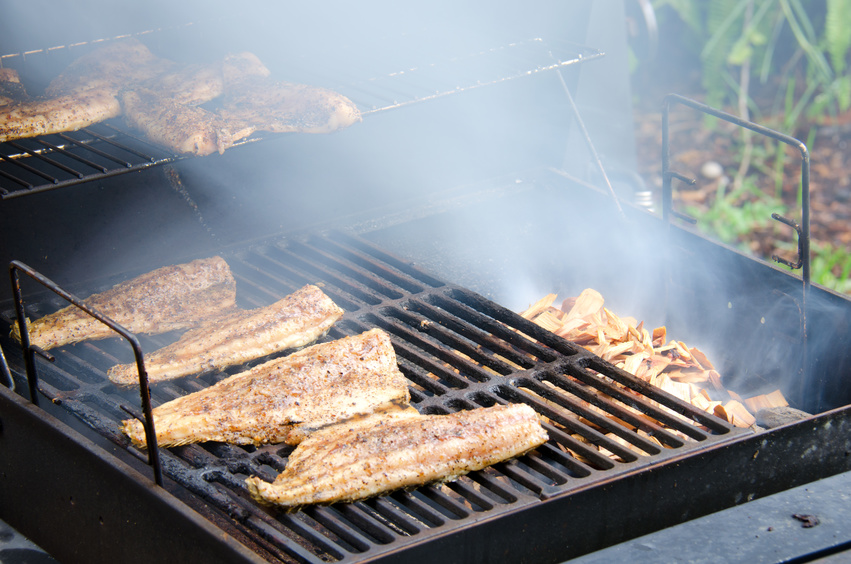 Wood smoked smoking mullet fish