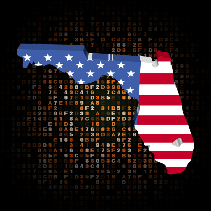 Florida map flag on hex code illustration