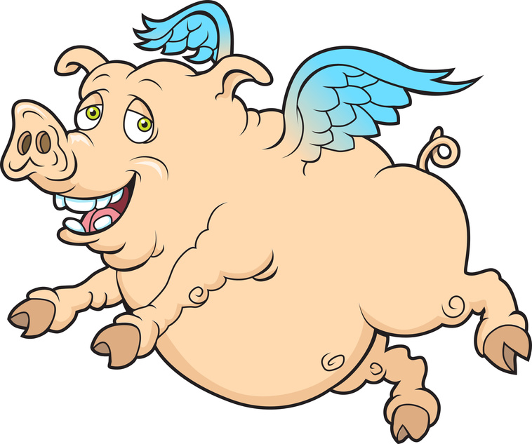 Airport Needs More Hangars, Restrooms, Etc. Not A Disney World Winged Pig In A Poke